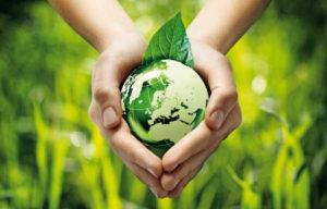 Una ecología integral: civilizar la economía y cuidar la creación